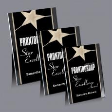 Acrylic Plaques - Pickering Award
