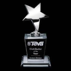 Star Awards - Summerhill Award