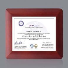 Certificate Frames - Boise Certificate Holder