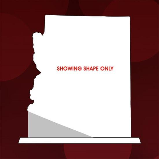 Arizona State Award