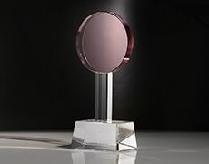 Pink Lolipop Custom Award