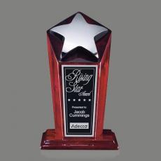 Star Awards - Strickland Award