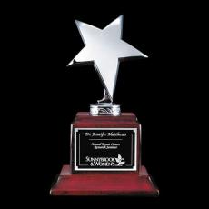 Star Awards - Densley Star Award