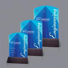 Full Color Awards - VividPrintAward - Sierra Arch