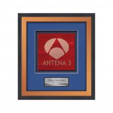 Framed Awards & Plaques - Jasper -  Bronze