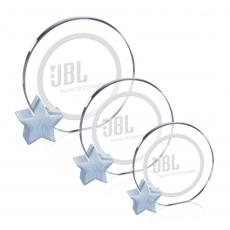 Circle Awards - Verdunn Award - Starfire/Silver Star Diam