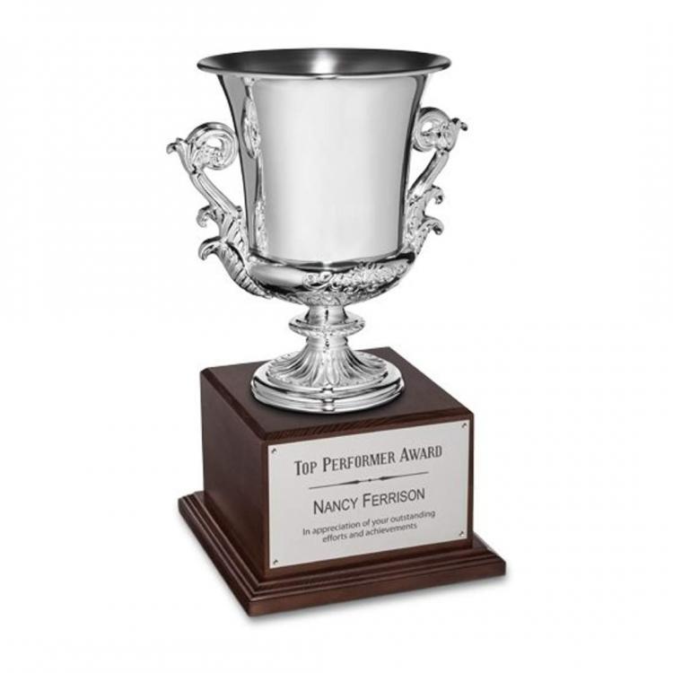 Award Cup - Silver