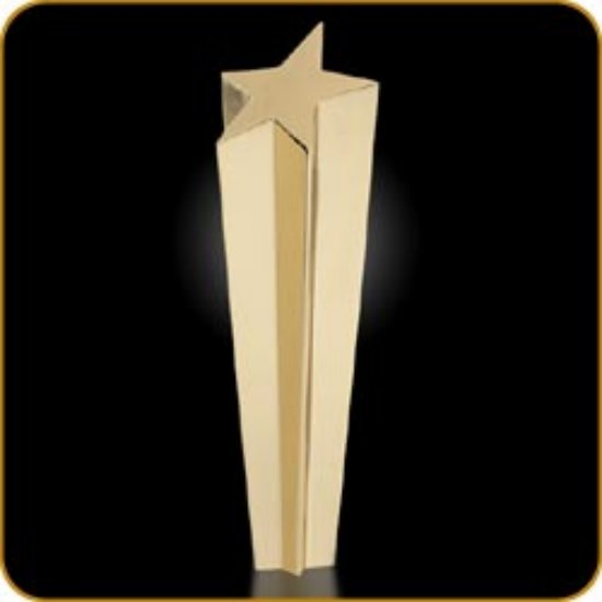AWARD ONLY - Shooting Star 24k Gold