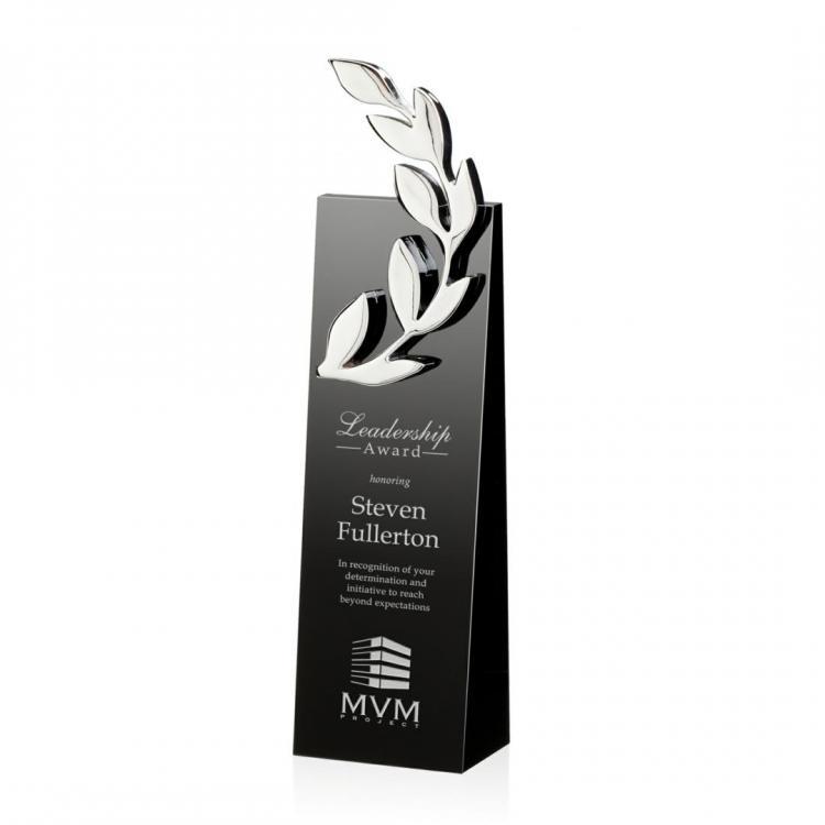 Camborne Award - Silver