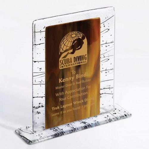 Triumph Fusion Award