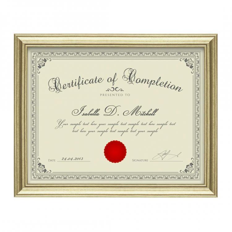 ellison certificate frame gold awards com pfn9142 g