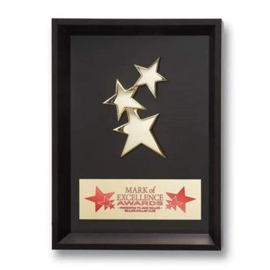 Framed Constellation Award
