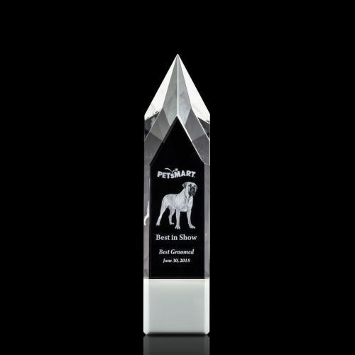 Coventry 3D Award - White
