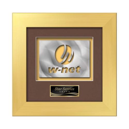 Premier Aquashape™ Award - Gold