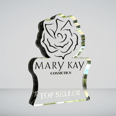 Custom Acrylic Award Example - Sales Award