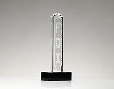Fox Custom Award