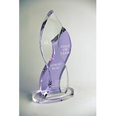 James Madison University Hall of Fame Award