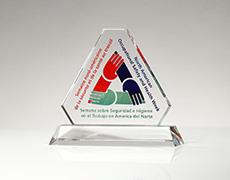 Occupational Therapy Custom Award