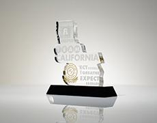 Team California Large Custom Award
