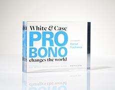 White and Case Custom Award